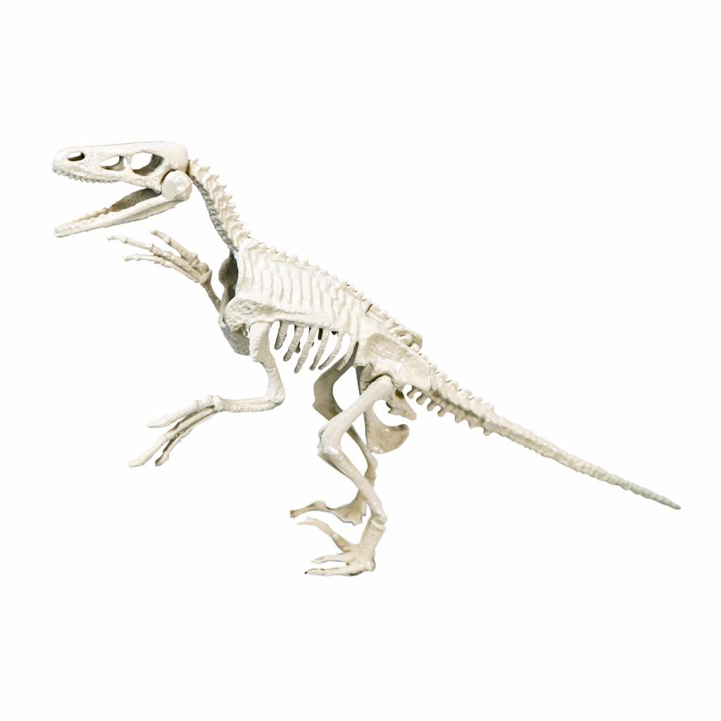clementoni archeospel velociraptor