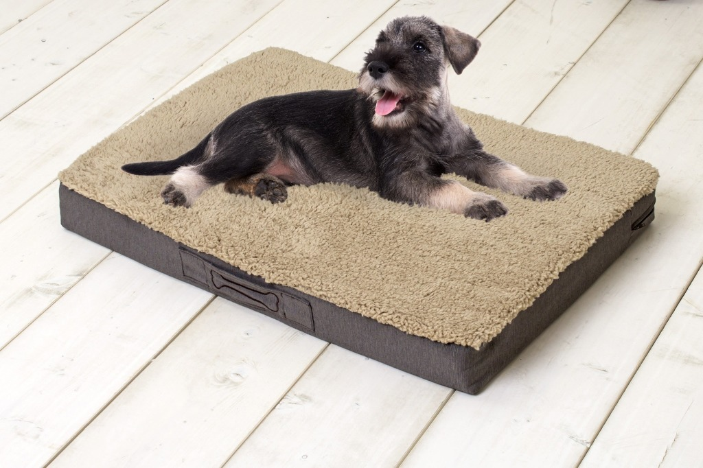 Sun Garden Buddy Orthopedisch Hondenkussen 120x72x10cm Beige