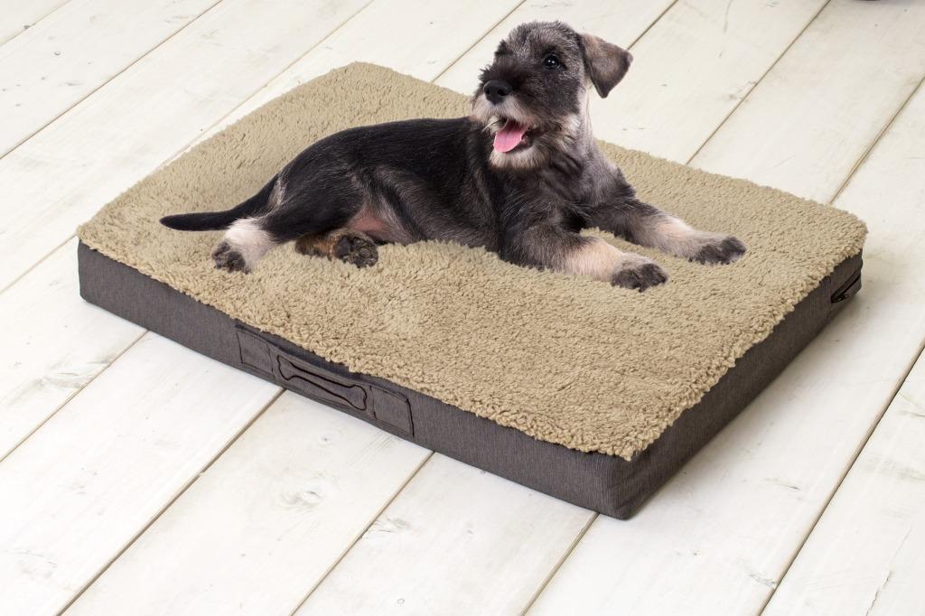 Sun Garden Buddy Orthopedisch Hondenkussen 140x100x10cm Beige