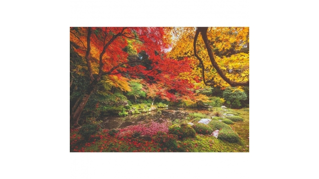 Clementoni High Quality Collection Puzzel Herfst 1500 Stukjes