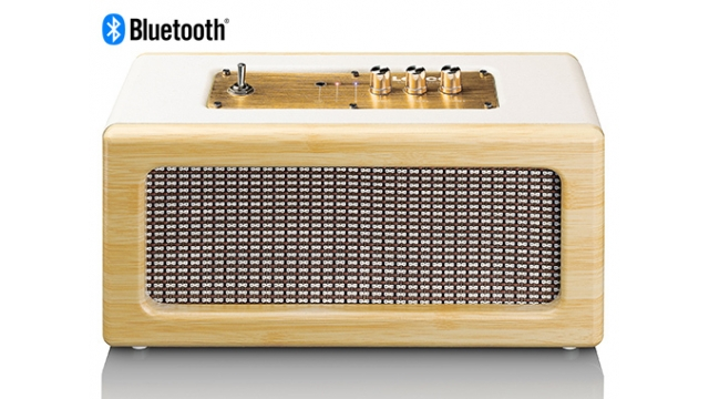 Lenco BT-300 Bluetooth Speaker Eiken